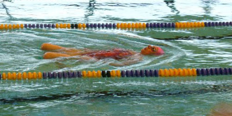 Breaststroker's Knee: 3 Tips to Avoid It - Swimming Advice
