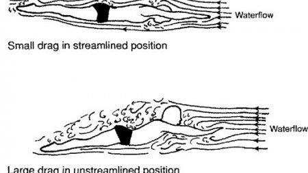 Streamline Explained (How Do Drag Forces Influence My Body In Swimming?)