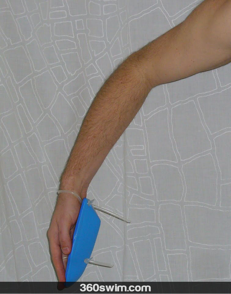 Early vertical forearm with antipaddles