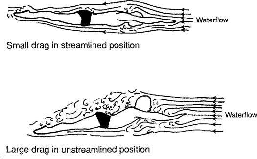 Streamline graphic from the book Swimming Fastest by Ernie W. Maglischo